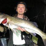 拾い釣りからの入れ食い! 東京湾ナイトゲームのボートシーバスで釣れまくり!