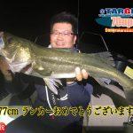東京湾ランカーサイズのシーバス! ナイトゲームで大型サイズが釣れました!