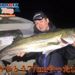 東京湾でウェイキーブーを投げ続けてみたら…70UPのランカーシーバスが釣れた!
