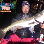 今夜も東京湾でランカーシーバスGET! 最後にはメイクドラマが待っていた!