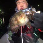 東京湾メバル調査に出船! 20cmUPのでっぷりとしたデカメバルが釣れました!