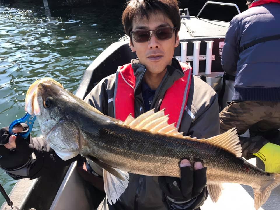 3/24 東京湾ボートシーバス デイゲーム
