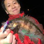 まだまだ釣れる! 4月の東京湾でメバルゲーム ソイやカサゴも釣れました!