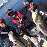 ボートからルアーを穴打ちして釣果爆発! 4月の東京湾シーバスが好調です!