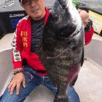 東京湾 ボートからの落としこみ黒鯛釣り! MAX46cmが出ました!