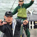 夏の東京湾で青物とタコが連発で釣れまくる!釣れた魚はお土産に持って帰れますよ!