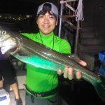 潮が上げてきてシーバスゲット! 少しシビアな夏の東京湾ボートルアー夜釣り!