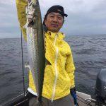 2019年の東京湾でサワラ爆釣情報!鳥山めがけてボートで駆けて釣りまくり!