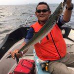 サワラ89cm3.7kgの最大釣果GET!!ボイル打ちだとシーバスとイナダも釣れてます!
