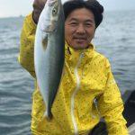 イナダの2匹掛けがあるくらい東京湾の釣果が上向き?!サワラとシーバスも釣れました!