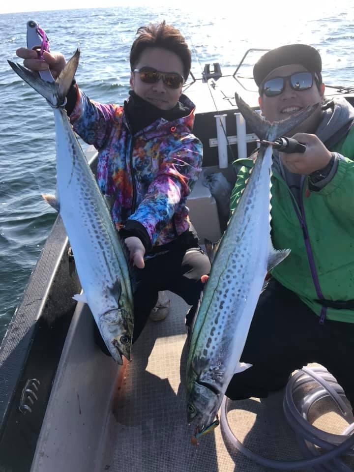 サワラのダブルヒットありの青物貸切便!東京湾のサワラが好調に釣れてます!