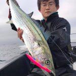 初乗船の方にサワラが連続ヒット!ルアー五目釣りでお土産になるほど釣れました!