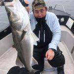 ルアー5目釣りでサワラ、イナダがまだ釣れてます!シーバス釣果もばっちりな1日!