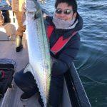 東京湾でまだまだサワラが釣れる?!シーバスやフグも混じるルアー五目釣り!