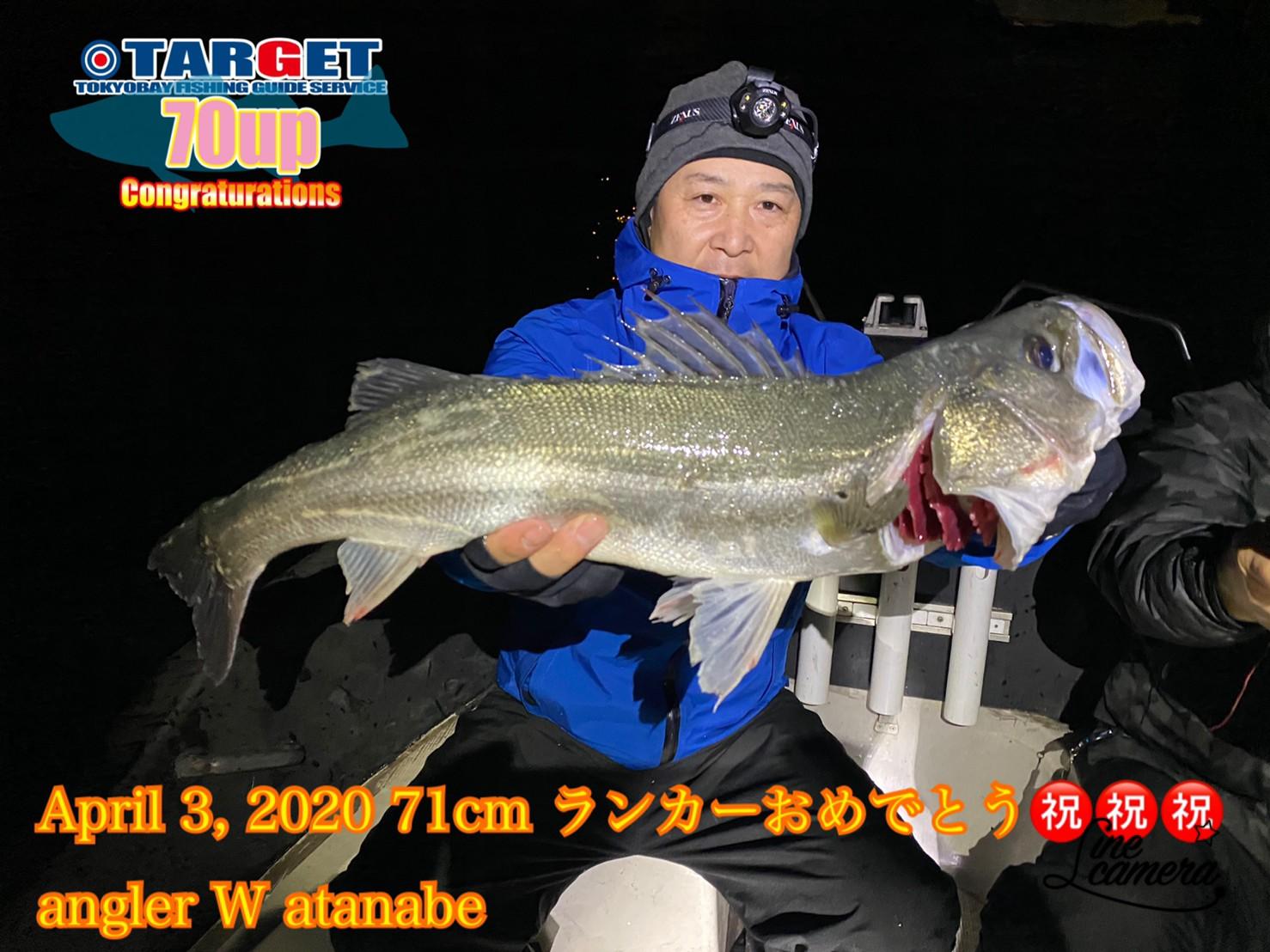 4/3 千葉県東京湾 ランカーシーバス