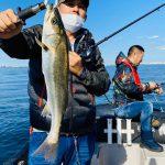 シーバス狙いで出船したら3月の海にサワラが跳ねてるw東京湾で青物釣り始め?!