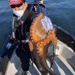 釣りのお土産にタコはいかが?千葉から出船してタコとシーバスフィッシング!