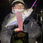 寒いけど熱いw冬の東京湾ナイトゲーム!アジ、メバルが釣れてます!