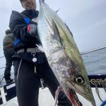 サワランチャーぶっ放し!w ボイルでイナダ、美味しそうなサバも釣れました!