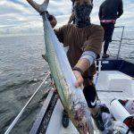 良型サワラが釣れてます!東京湾サワラチャレンジャー募集中です!